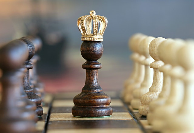 Chess King Crowned improve brain function