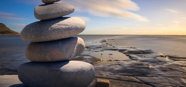 Mindful Landscape