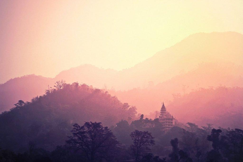 silhouette-of-trees-in-ms-brain-fog-landscape